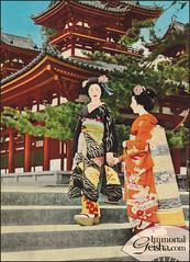 Maiko - Postcards from the 1950's (Naomi no Kimono Asobi) Tags: japan vintage japanese photo kyoto antique postcard maiko geiko photograph geisha kimono obi gion 1950 pontocho vintagephoto hanamachi vintagephotograph rppc