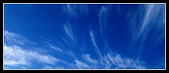 **bluest sky ever**