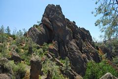 Pinnacles 2009 068