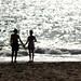 Ocean Silhouettes