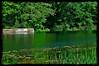 River in Ashland