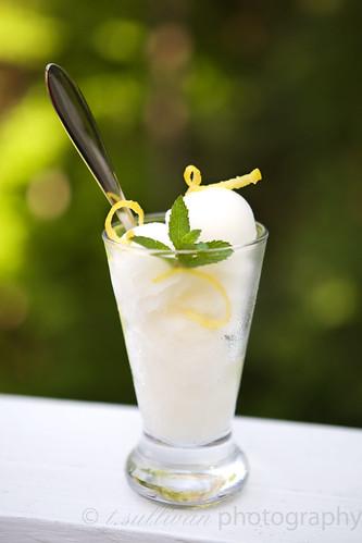 Limoncello & Mint Sorbet