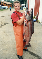 me and 75 pound king salmon in cook inlet (coreyfishes) Tags: california fish color dead photo kid fishing fisherman arnold young picture corey catch deadliest coreyfishes