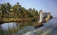 Backwaters in Kerala, Alleppey-Quilon (sapru) Tags: travel sea india green nature water boat kerala coastal serenity destination kollam backwaters freshwater alleppey keralabackwaters quilon alappuzha inlets