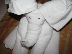 towel elephant (Sanalikethesun) Tags: white elephant fake towels