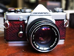New Skin (Angela&Martin) Tags: new slr film beautiful leather 35mm vintage lens 50mm prime snake f14 olympus ishootfilm om zuiko om1 leatherette e510 silvernose om50mmf14 akiasahi snakewineredcowhide