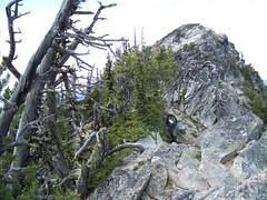 Looking up the ridge towards the summit.