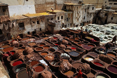 Tanneries (sebastien banuls) Tags: voyage old city travel vacation people brown man color colour men travelling leather architecture work canon photography scans photographie leer tomb working medieval scan morocco pools maroc scanned 5d 1001nights  ismail tanning marokko fes islamic 2010 meknes tannery moulay tanneries    mequinez    mekns  leerlooierij   aplusphoto
