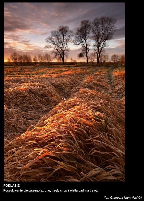 Grzegorz-Niemyjski-Krajobraz-FotoGeA2-foto-11