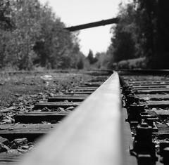 DSC02609-1 (sirsaggi) Tags: bw eisenbahn sw rost industrie schiene landschaftsparknord weis endlos blackandwhiteschwarz