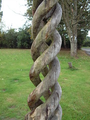 Maple Spiral (andyish) Tags: sculpture art spiral design carved suffolk oak crystals hand furniture hard chainsaw tables worked bespoke heartsofoak andyish