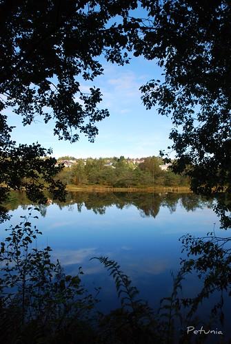 Birkelandsvannet oktober