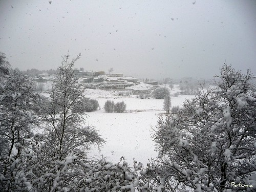 Funkishaugen vinter