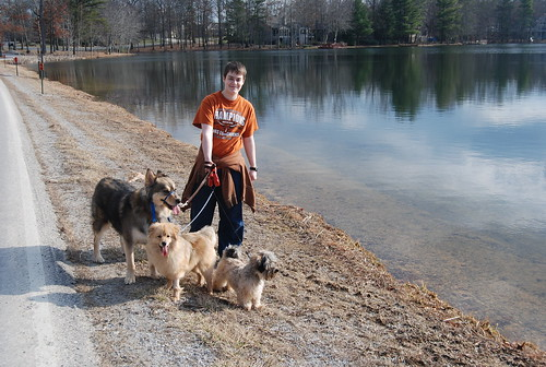 Walking the Pups!