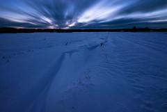 Flowing Snow (Joni Niemelä) Tags: longexposure winter sky snow cold finland pentax freeze bluehour aficionados sigma1020mm k10d pentaxk10d