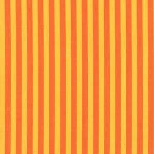 Citrus Clown Stripe
