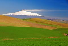 Etna - Sicily (Giuseppe Finocchiaro) Tags: blue winter sky panorama verde green landscape volcano nikon blu cielo sicily inverno etna sicilia vulcano abigfave overtheexcellence