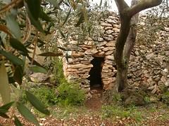 Barraca (3) (calafellvalo) Tags: muro arquitectura ab marge refugio casita barraca choza piedra barraques chabola pedraseca margenes solopiedra