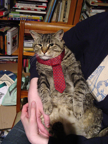 Parker in her new tie