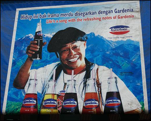 gardenia-soft-drink