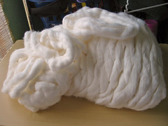 cotton roving