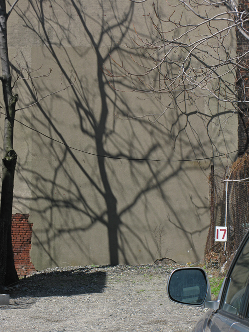 scene with tree shadow and number 17, Jersey City, NJ