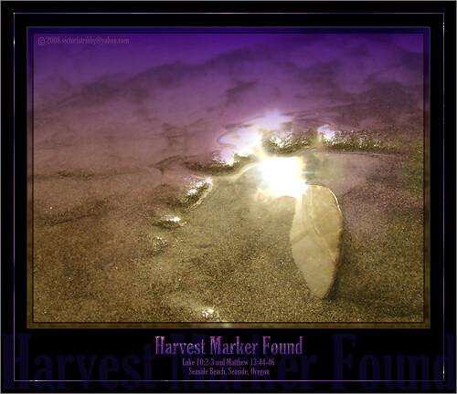 Harvest Marker Found 2