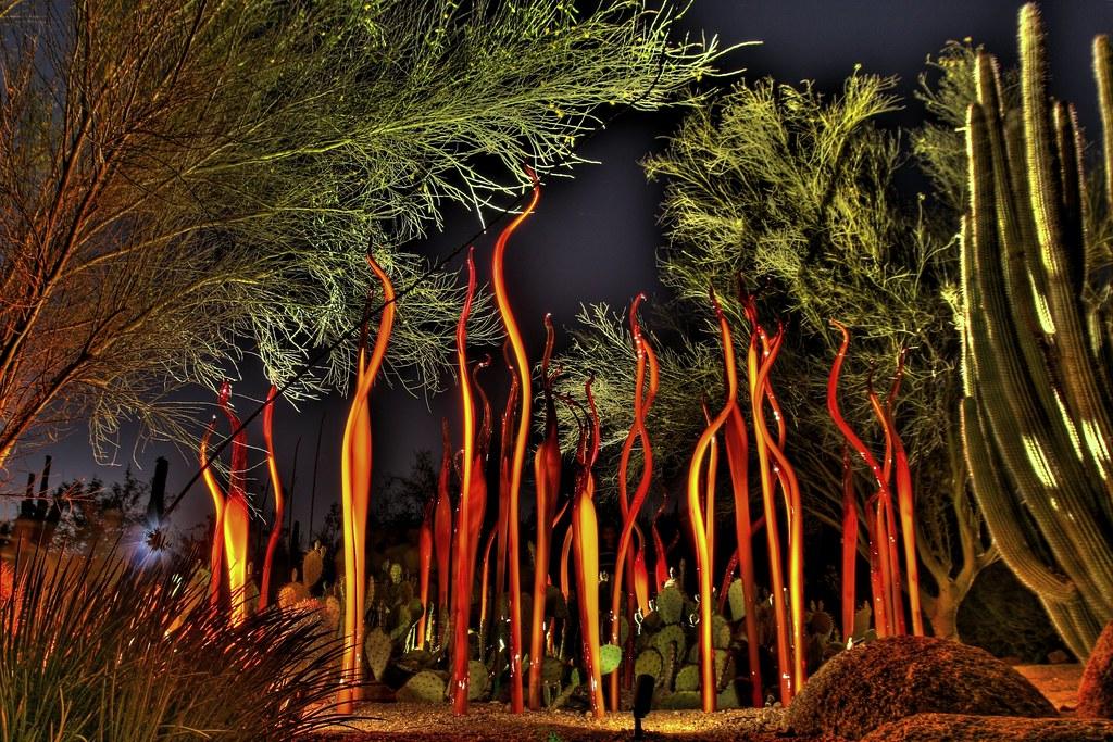 Scorpion Tails and Bamboo Exhibit @ Desert Botanical Gardens
