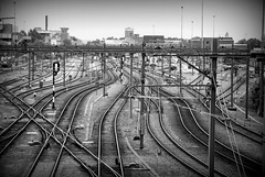 Leeuwarden, tracks (Just a guy who likes to take pictures) Tags: city urban bw en white black holland blanco public netherlands monochrome lines train tren photography und europa europe track fotografie photographie y zwartwit ns negro transport tracks nederland thenetherlands zug cable transit infrastructure rails change holanda bahn zwart wit weiss paysbas schwarz friesland stad trein spoor kabels niederlande spoorwegen zw the wissel weis ljouwert infrastructuur frieslan frieslân