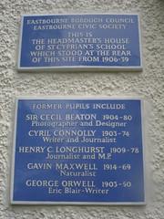 Photo of St. Cyprian's School blue plaque