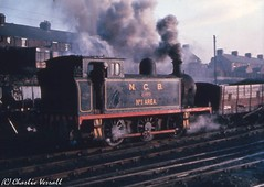 Hawthorn Leslie 2769 NCB Wearmouth Colliery JEAN - 8 January 1965 (pondhopper1) Tags: industrial steam railways ncb uksteam