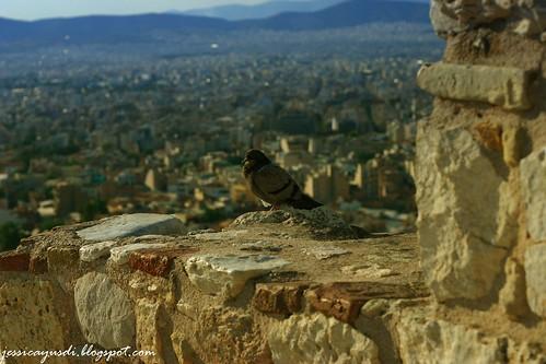 day_acropolis14