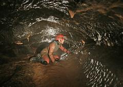 Syphon Series - Dan Yr Ogof (dudley bug) Tags: limestone cave caving karst spelunking caver danyrogof dyo syphonseries