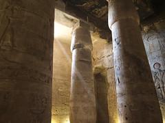 Temple of Seti I at Abydos (XV) (isawnyu) Tags: history temple graffiti hall ancient paint pillar masonry egypt carving civilization column seti inscriptions reliefs egyptology abydos hypostyle abdju pleiades:depicts=756512