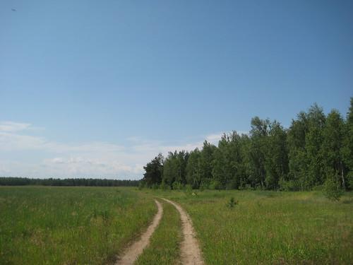 Дорога через поля