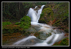 Silk water ( Pere Soler) Tags: water interestingness agua salt silk explore salto seda cascada espolla canon1740lf4 ysplix braid44 vosplusbellesphotos micarttttworldphotographyawards micartttt marts