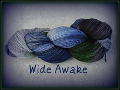Wide Awake- Fresh From the Cauldron Original Colorway (squib stitcher) Tags: twilight yarn wideawake fftc