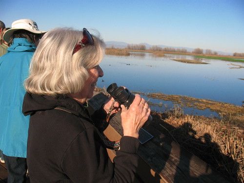 Mom at the Colusa Wildlife Refuge