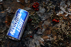 chicago beer leaves berries can hydepark keystonelight