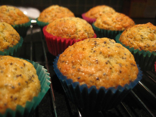 Citrus Poppy Seed Muffins