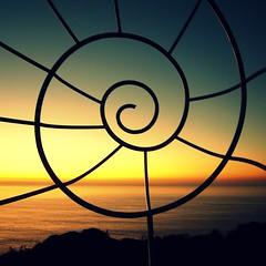 La vida es una espiral / Life is a spiral