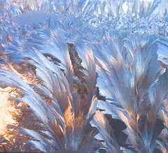 Morning Frost (Pat Kilkenny) Tags: blue orange cold ice canon march colorful frost pattern patterns frosty 2009 diamondclassphotographer flickrdiamond canon40d patkilkenny