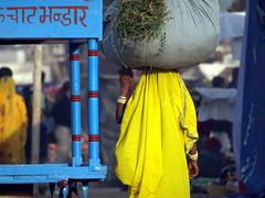 Pushkar Mela (Om Shanti Om2009) Tags: blue women magic pushkar sari hindi rajasthan