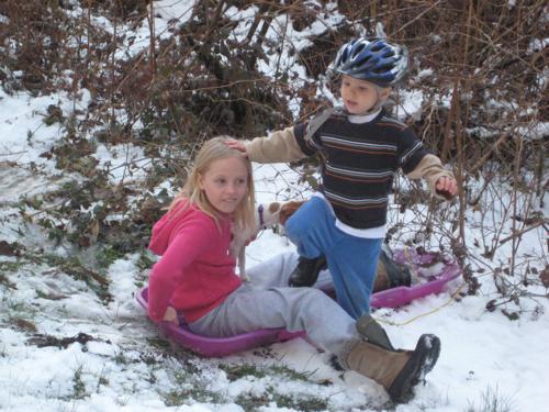 Zippy & G'tums sledding in March