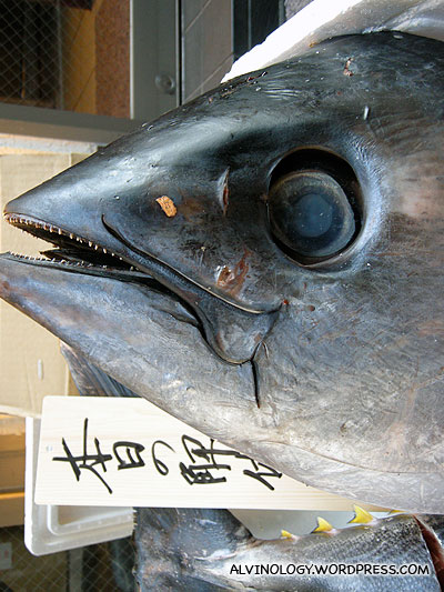 This is a real giant fresh tuna head displayed outside the restaurant