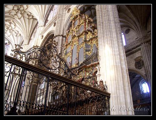 Organo de Evangelio de la Catedral Nueva de Salamanca - Fachada del coro