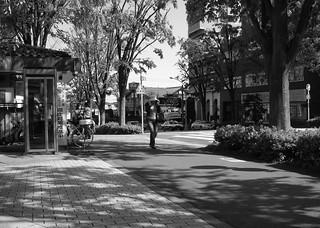 町田樹 画像48