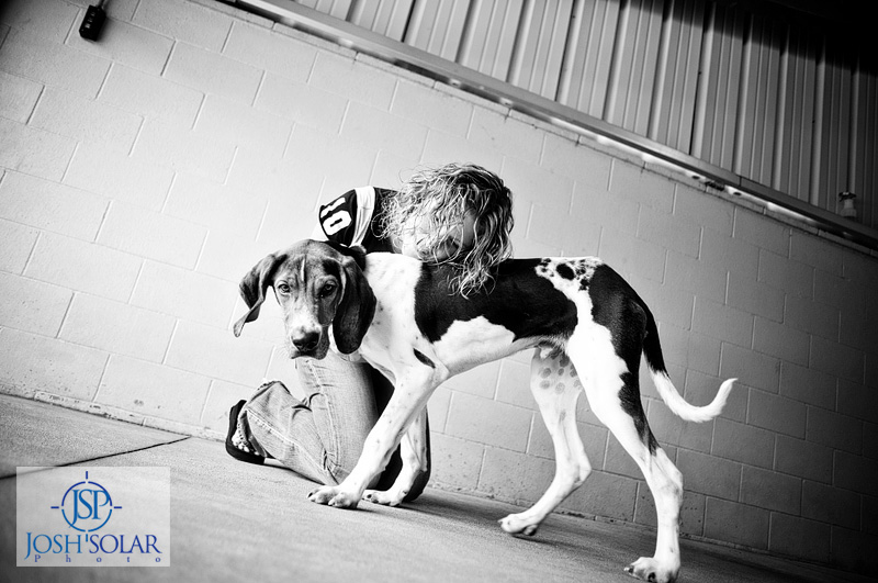 A Kansas City dog photographer Solar Photographers pet portrait taken at Wayside Waifs. 15