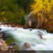 Tenaya Creek, Yosemite National Park (#272)