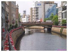 Horikawa Flower Festival 20090327 #06